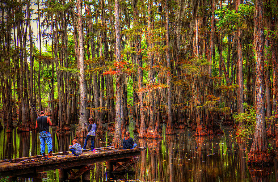 Southern Swamp Photograph - Family Bayou Fishing by Ester McGuire