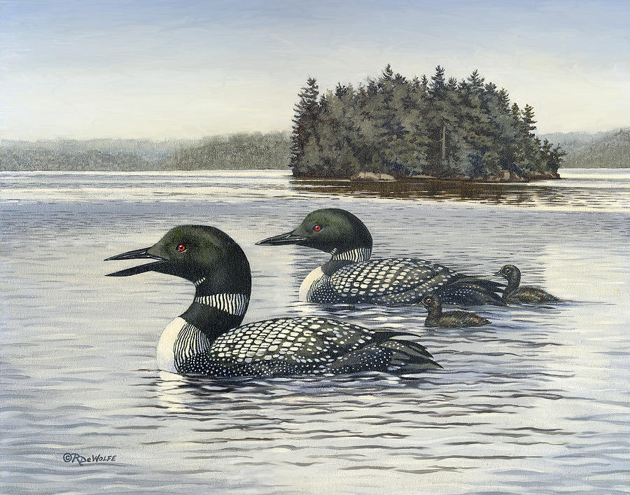 Common Loon Painting - Family Outing by Richard De Wolfe