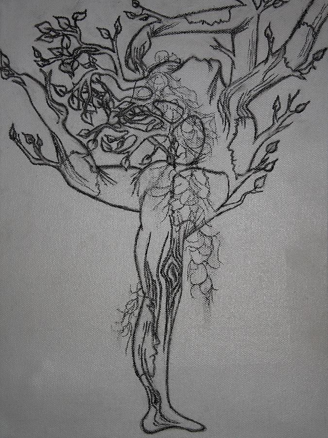 family tree drawing by zainab ali tapal