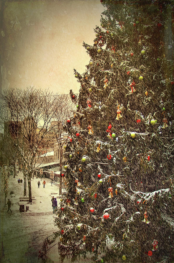 Faneuil Hall Christmas Tree - Boston Ma by Joann Vitali