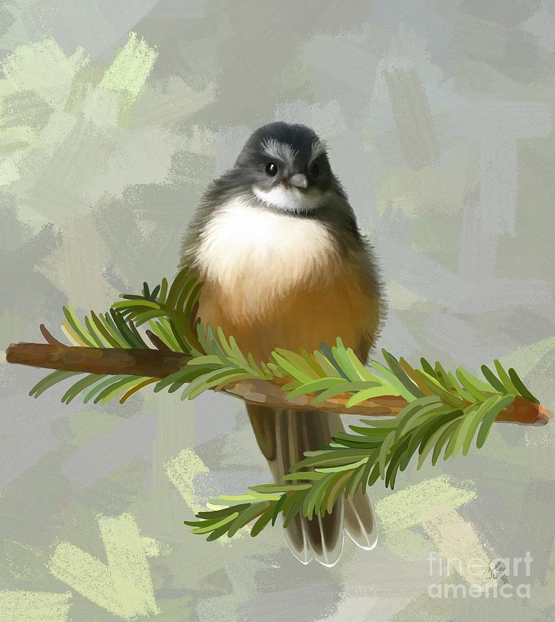 Bird Painting - Fantail  by Ivana Westin