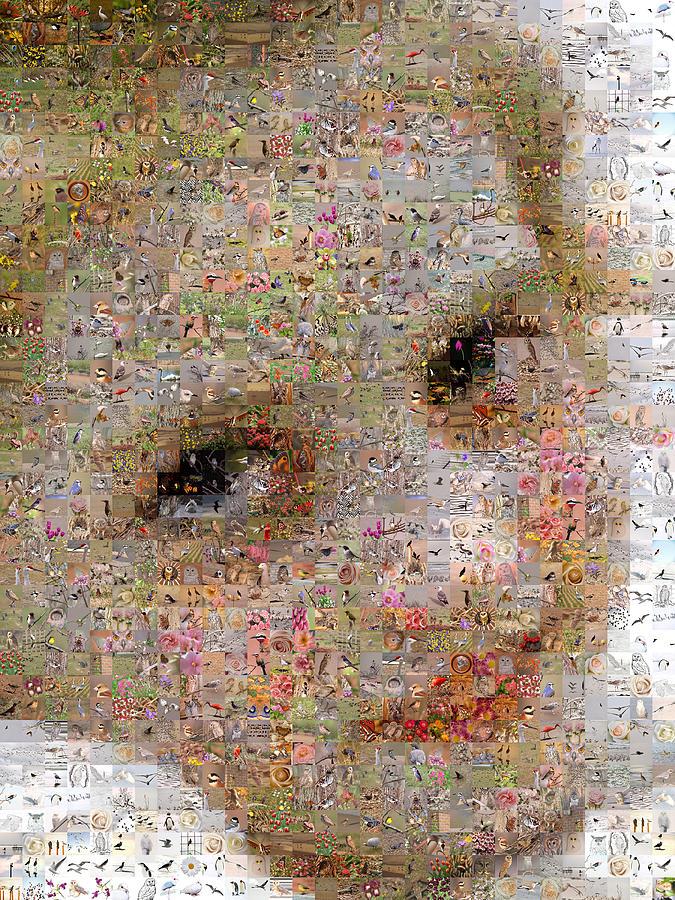 Mosaic Digital Art - Fardeau Agreable A by Gilberto Viciedo