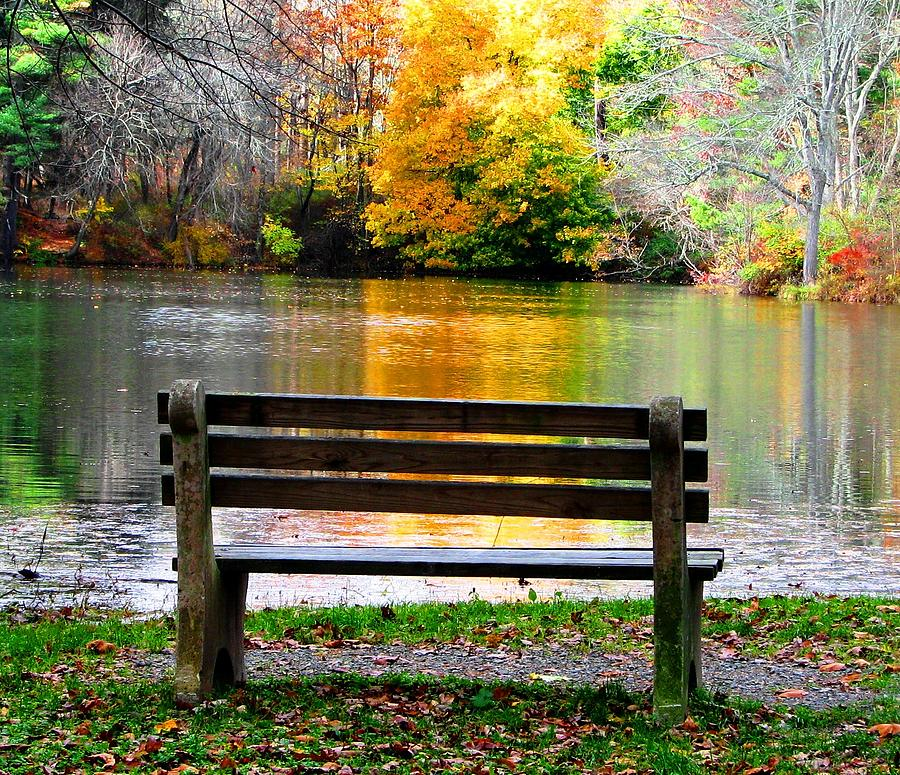 Bench Photograph - Farewell Autumn by Angela Davies