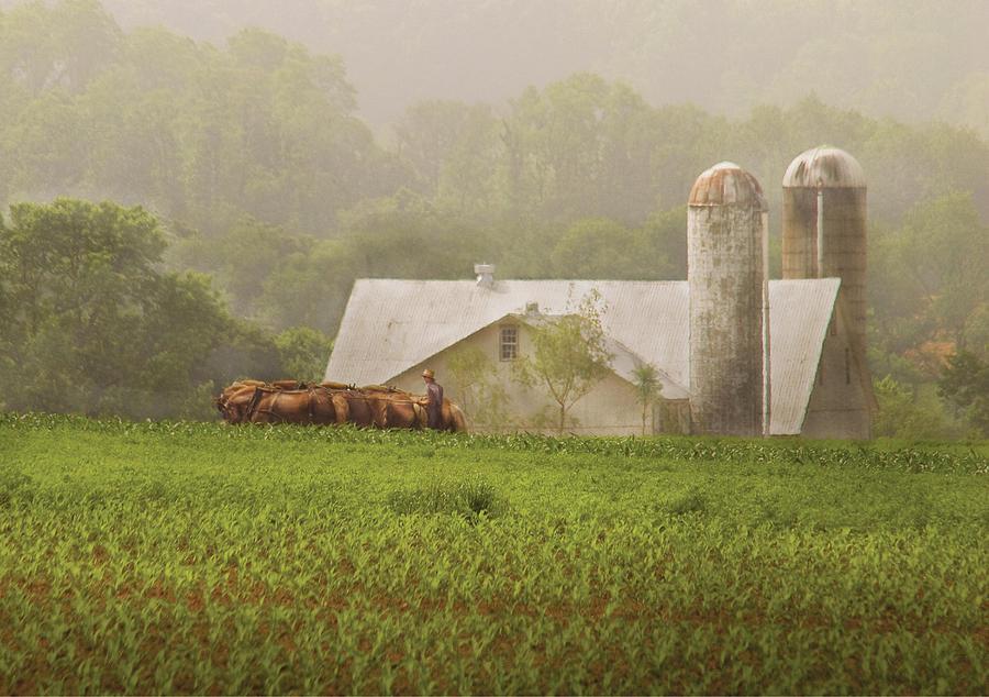 Savad Photograph - Farm - Farmer - Amish Farming by Mike Savad