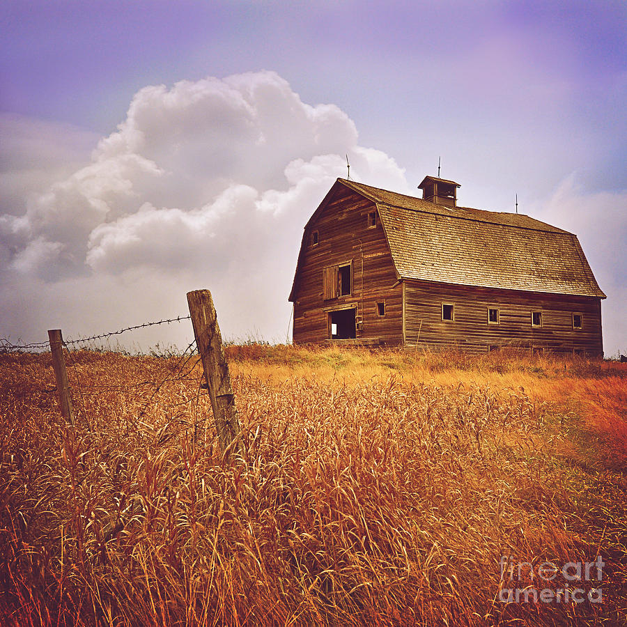 Farm Barn by Von McKnelly