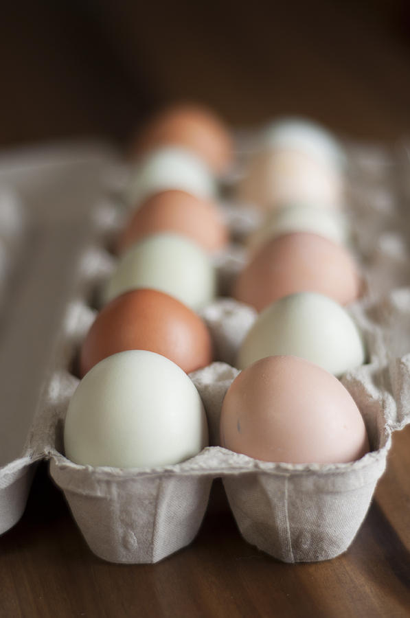 Eggs Photograph - Farm Fresh Eggs by Ken Stigler