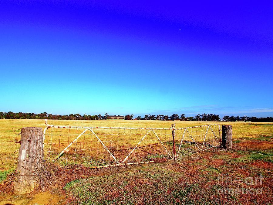 Farm Gate Series 1 by Ronald Rockman
