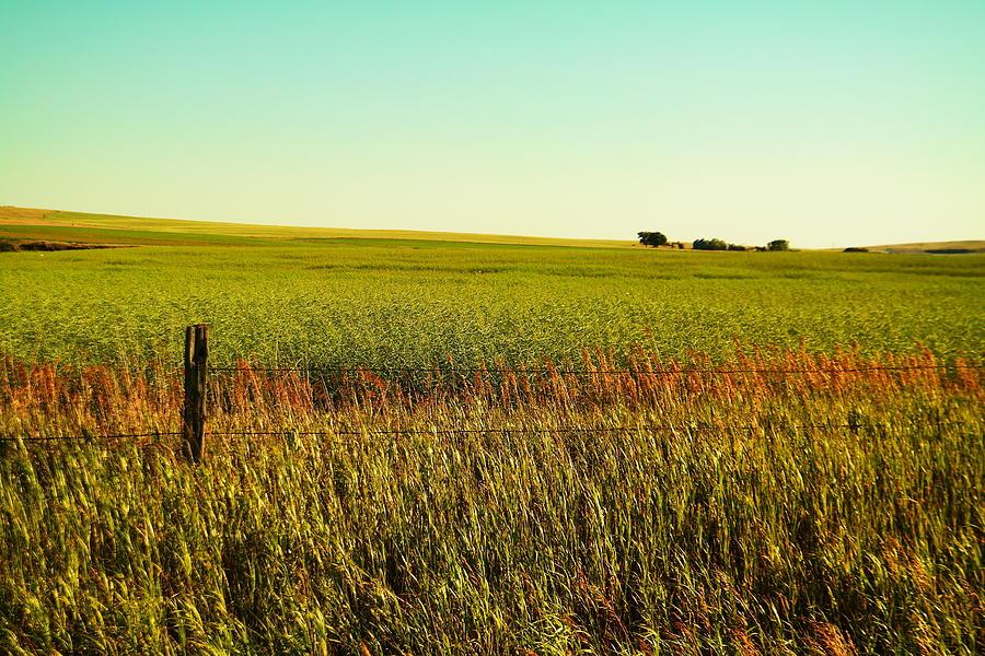 Farm Landscape Photograph