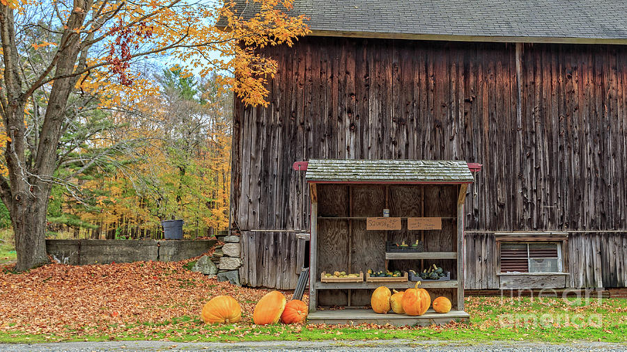 Vermont Photograph - Farm Stand Etna New Hampshire by Edward Fielding