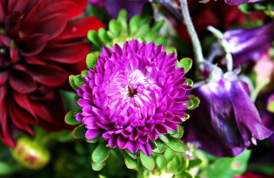 Flower Photograph - Farmers Market Bouquet by Cathie Tyler