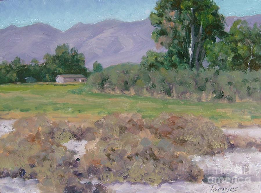 Farmland in Mecca California by James H Toenjes