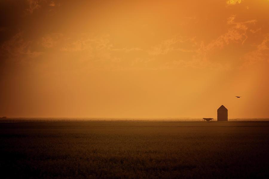 Farmland by Windy Corduroy