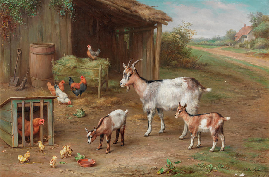 Donkeys Painting - Farmyard Gathering by Edgar Hunt