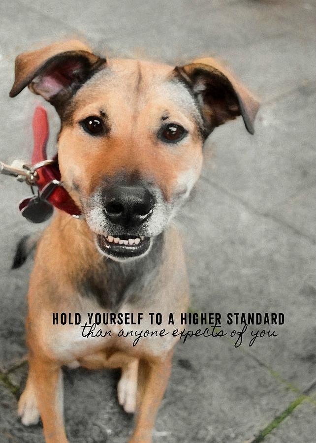 Dog Photograph - Farrahs Smile Quote by JAMART Photography