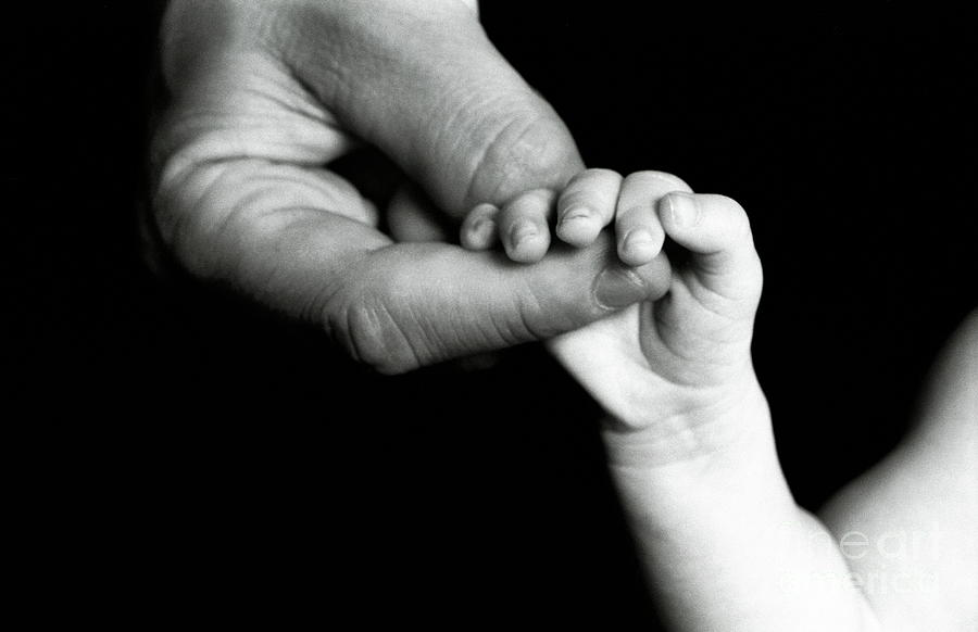 Care Photograph - Father Holding Hand Of Baby by Sami Sarkis