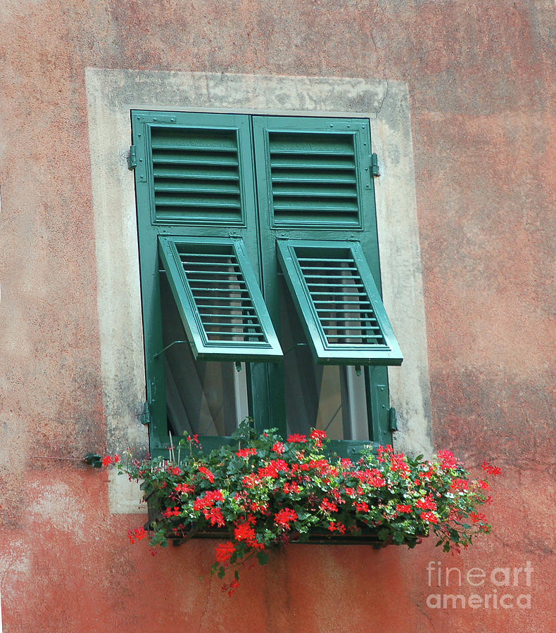 Flower Box Photograph - Faux  Painting Window  by Frank Stallone