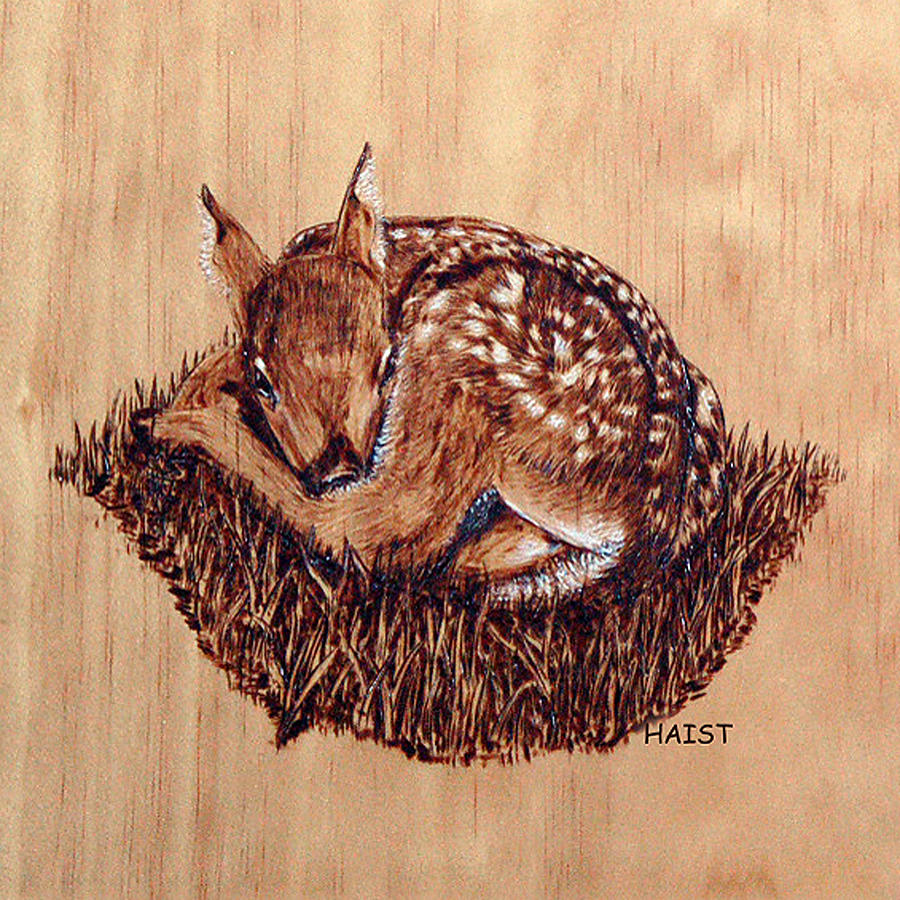 Fawn Pillow/bag by Ron Haist