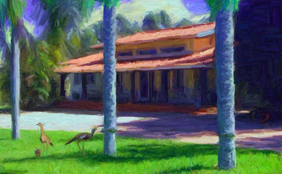 Farm Main House 1 Digital Art
