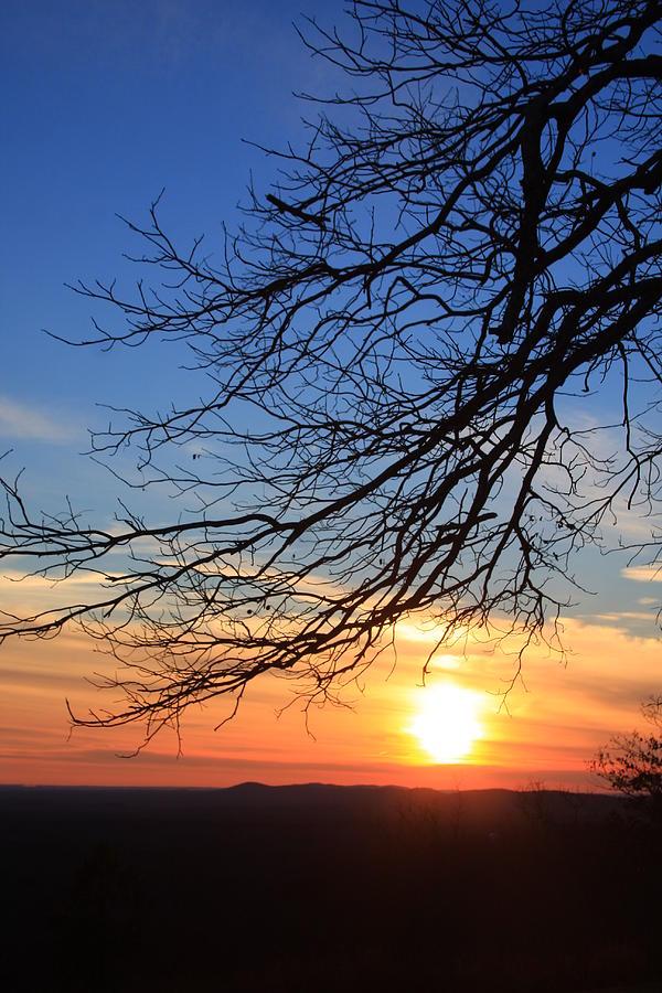 Fd Roosevelt State Park Ga Photograph