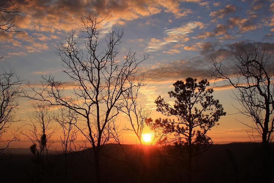Fd Roosevelt State Park Pine Mountain Ridge Ga Photograph