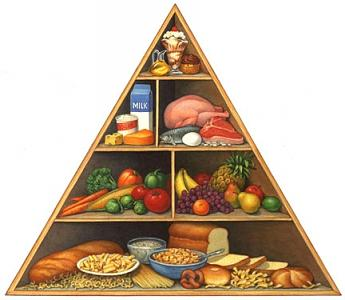 Food Pyramid Painting - FDA Food Pyramid by Douglas Schneider