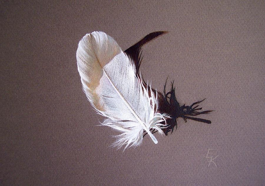 Still Life Drawing - Feather And Shadow 1 by Elena Kolotusha