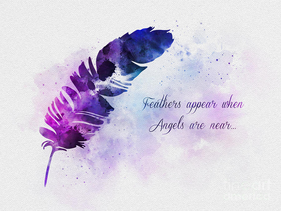 Feather Mixed Media - Feathers Appear When Angels Are Near by My Inspiration