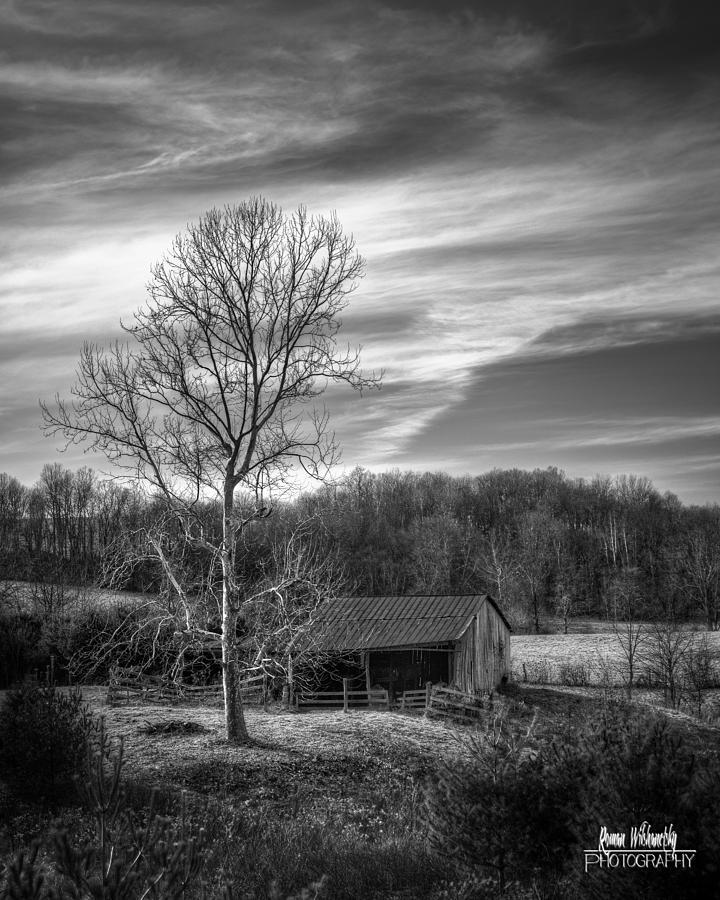 February Sky by Roman Wilshanetsky