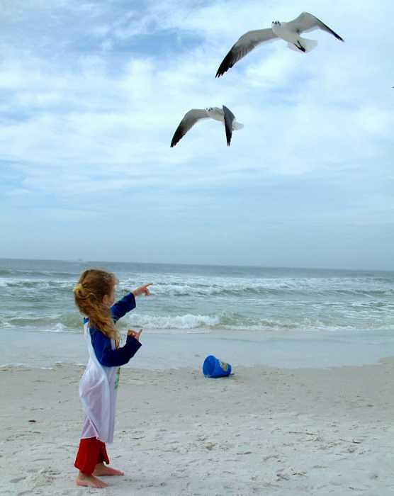 Beach Photograph - Feed The Birds by Cora Busch