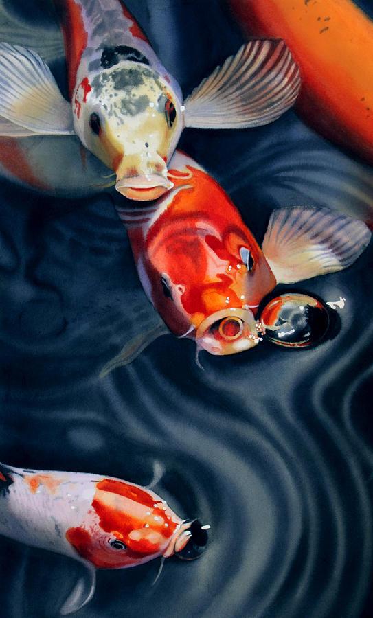 Koi Painting - Feeding Frenzy by Denny Bond