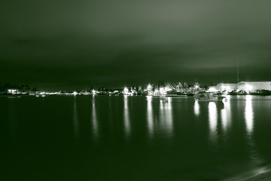 Nature Photograph - Feelin Green On The Seas by Bradley Nichol