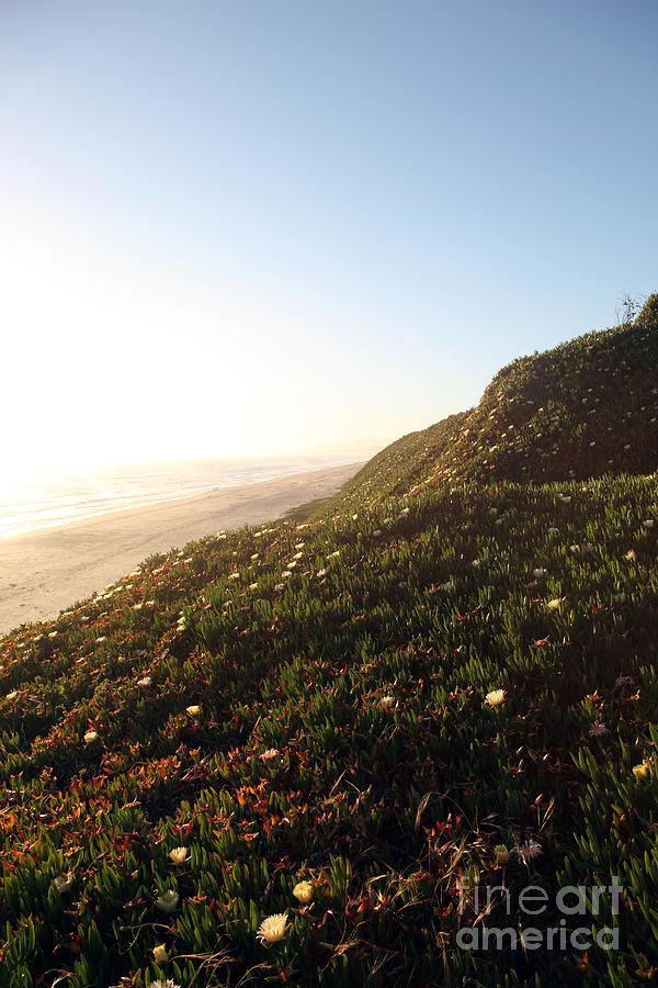 California Coast Photograph - Feels Like Home by Amanda Barcon