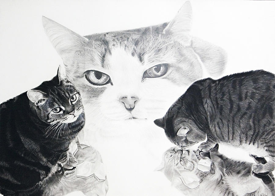 Charcoal Painting - Felines by Raymond Potts