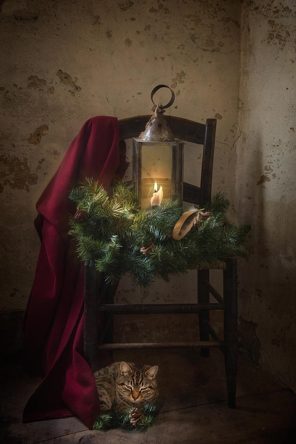 Feliz Navidad by Robin-Lee Vieira