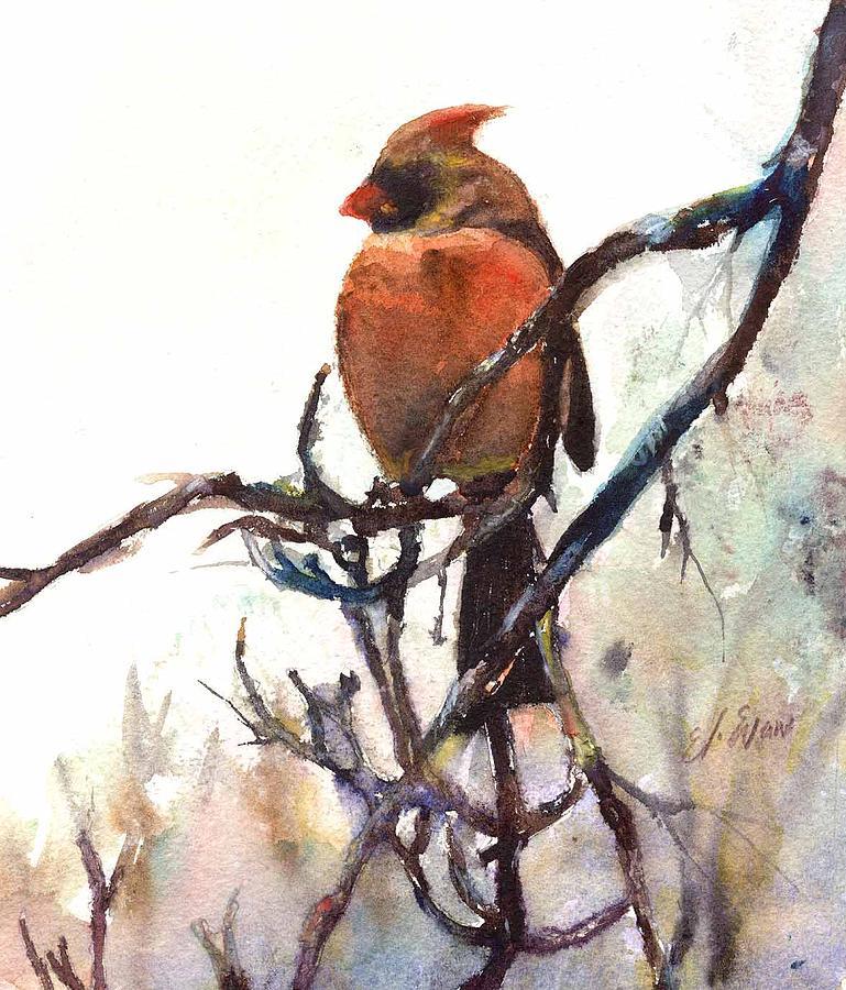 Nature Painting - Female Cardinal 2 by Elizabeth Evans