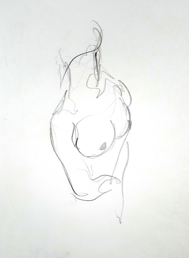 Female Drawing - Female Nude Torso by Dave Martsolf