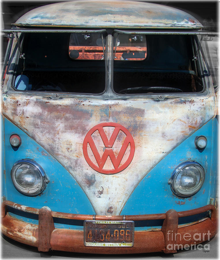 Vw Photograph - Females Wanted by Steven Digman