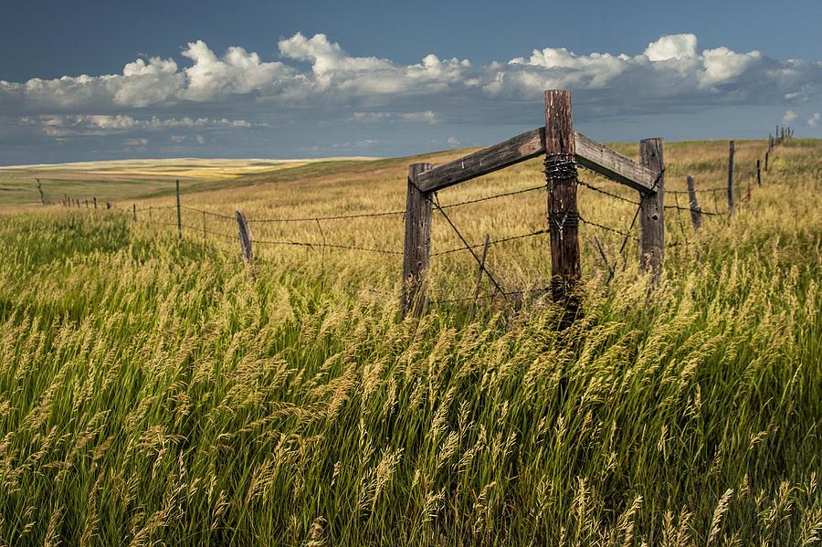 Fence Corner On The South Dakota Prairie Photograph by ...