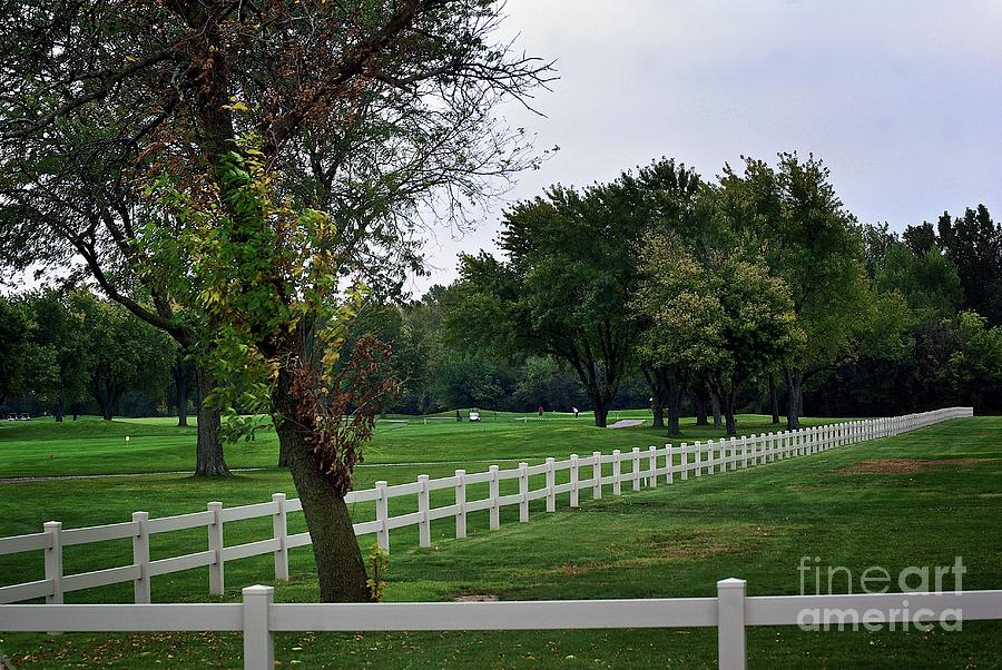 Fence On The Wooded Green Photograph
