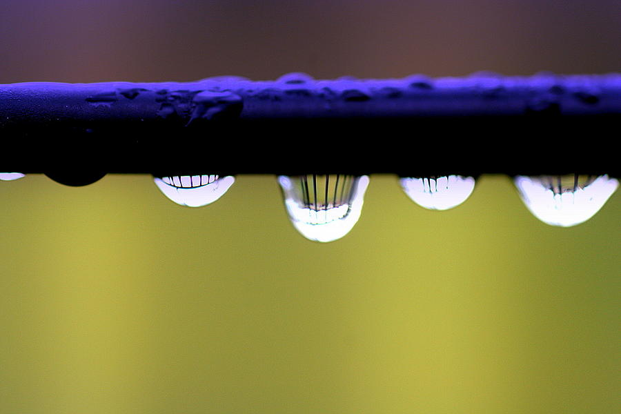 Abstract Photograph - Fence Reflected by Kerry Reed