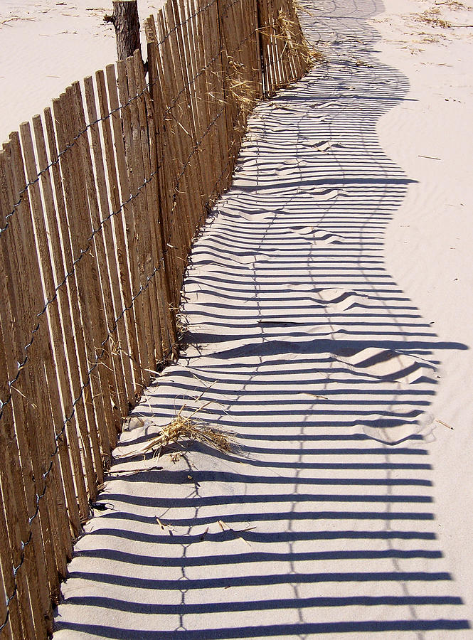 Fence Shadow Photograph by Iris Posner
