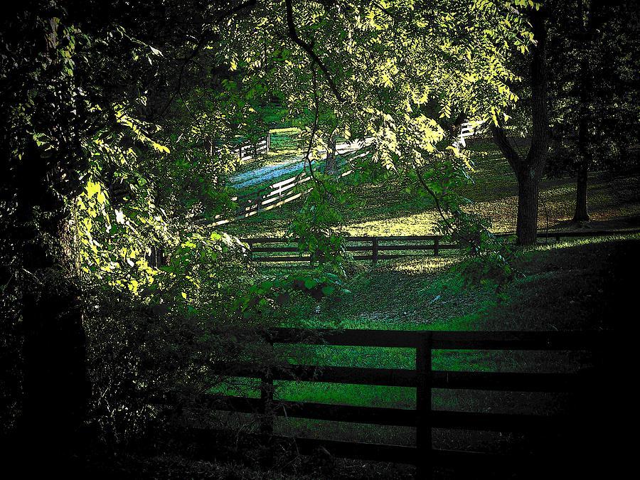 Fences Photograph - Fences On The Farm by Joyce Kimble Smith