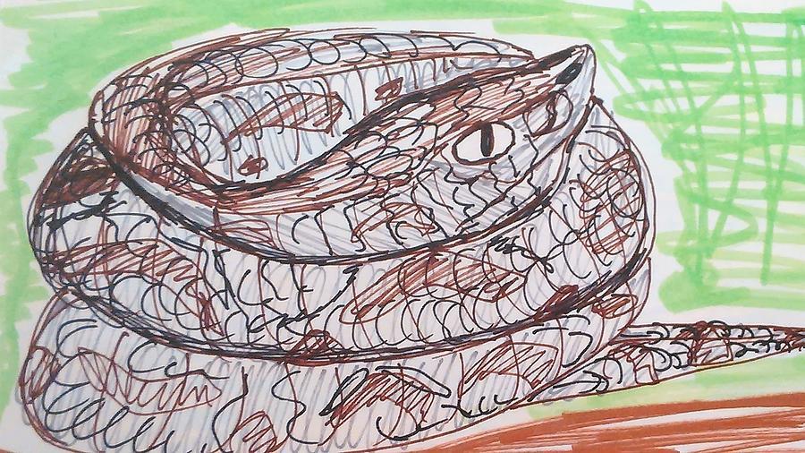 Fer-de-lance Drawing - Fer-de-Lance by Andrew Blitman