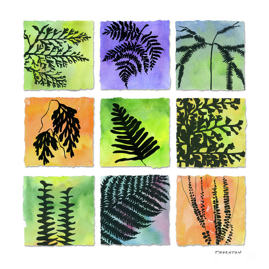 Ferns of Hawaii by Diane Thornton