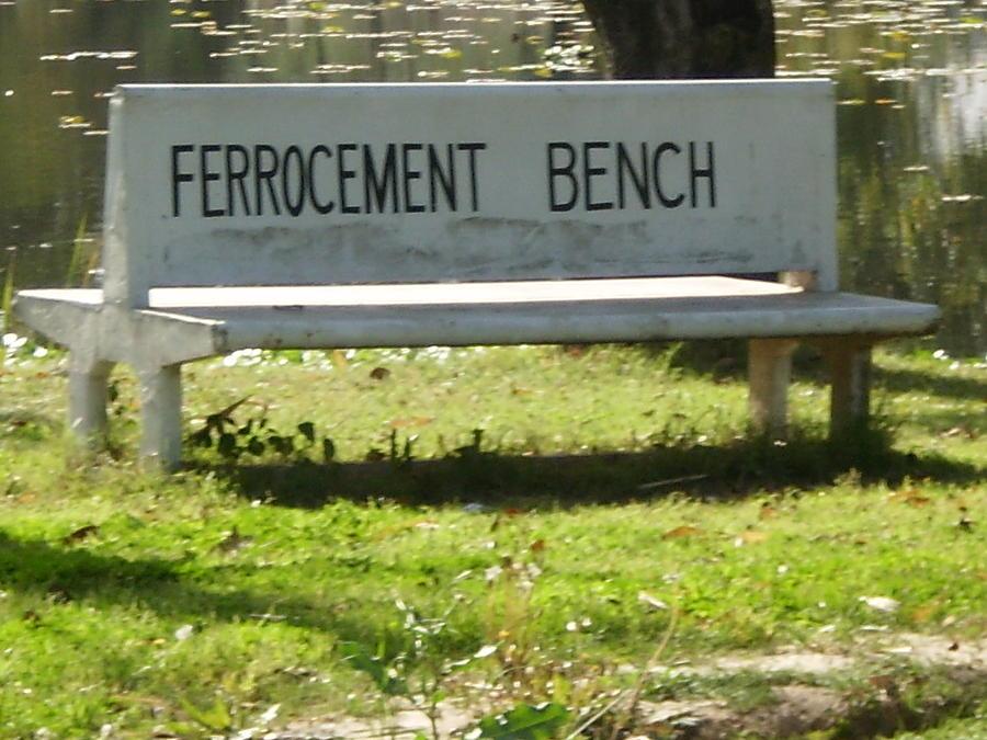Architecture Photograph - Ferrocement Bench by Munir Ahmad
