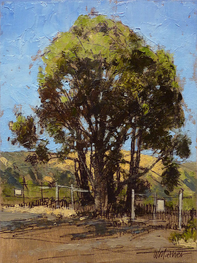 Sunlit Tree Painting - Ferry Point by Bill Mather