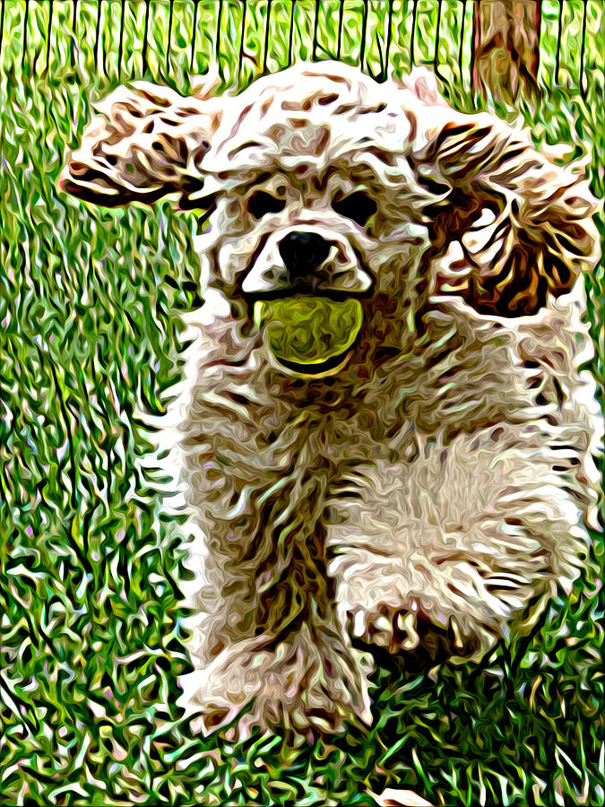 Dog Painting - Fetch by Laura Brightwood