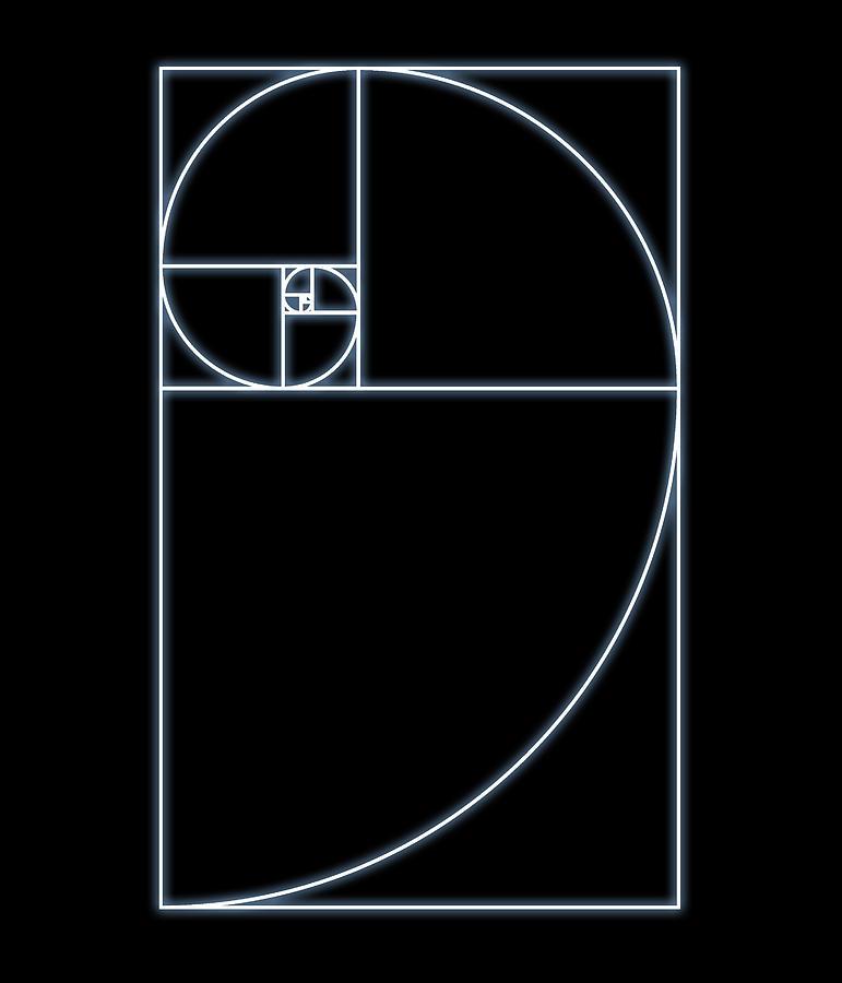Fibonacci spiral artwork photograph by seymour for Golden ratio artwork