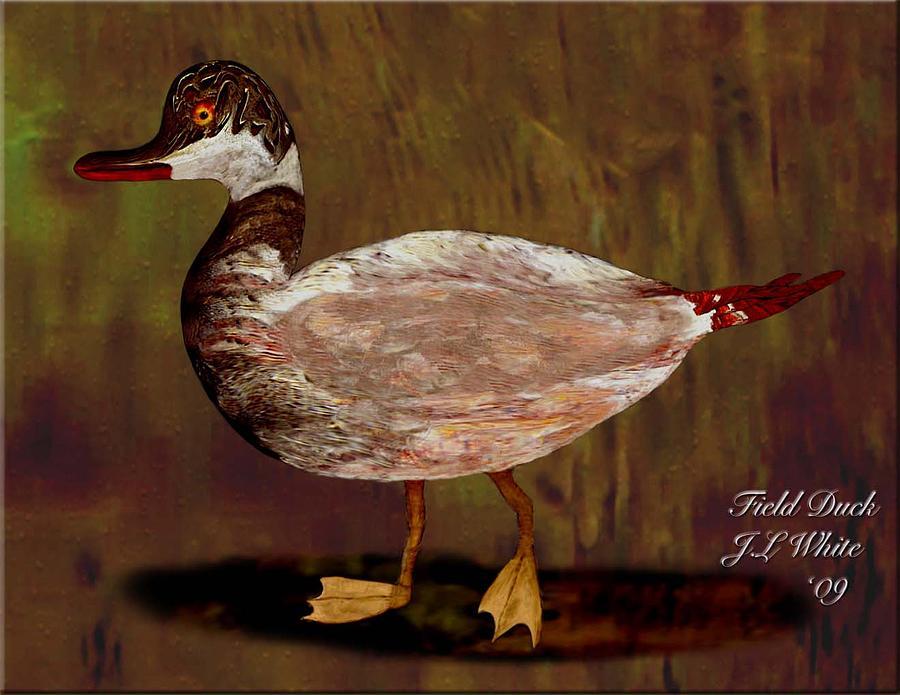 Duck Digital Art - Field Duck by Jerry White