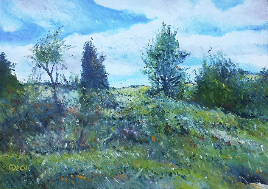 Landscapes Painting - Field In The Langeberg Western Cape South Africa 2016 by Enver Larney